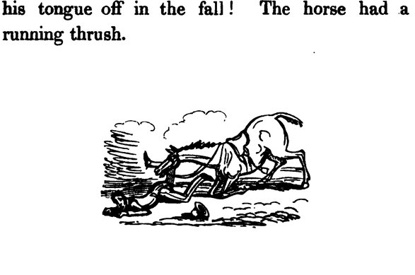 AdventuresofaGentlemaninSearchofaHorse,The(1836)b.JPG