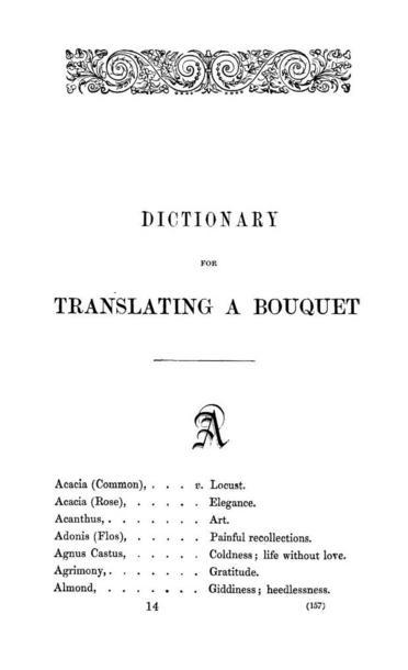 DictionaryforTranslatingBouquet.jpg