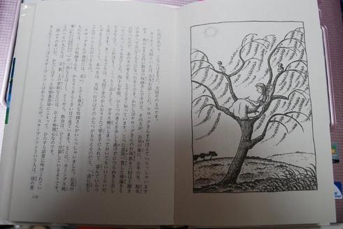 KinnoHoshi-IshiharaMiwako.jpg