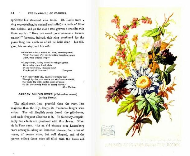 LanguageofFlowers(Boston,1865)August.JPG