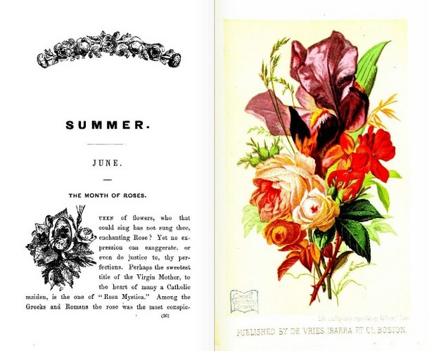 LanguageofFlowers(Boston,1865)June.JPG
