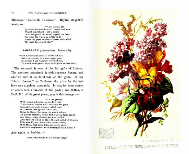 LanguageofFlowers(Boston,1865)November.JPG