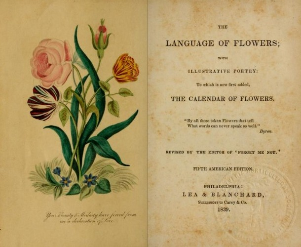 LanguageofFlowers(Philadelphia,1839).JPG