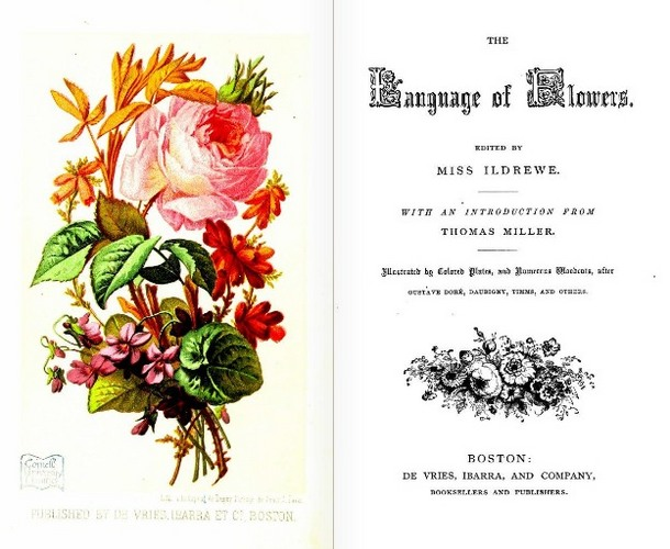 TheLanguageofFlowers(1865).JPG